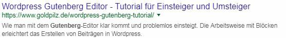 Gutes Beispiel: Ein Google Suchergebniseintrag mit gekürztem Permalink