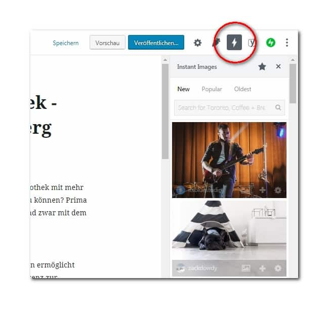 Gutenberg-Editor: Seitenleiste des Plugins Instant Images